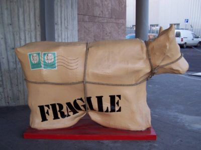 PAC-CO(W) – Fragile 易碎品牛