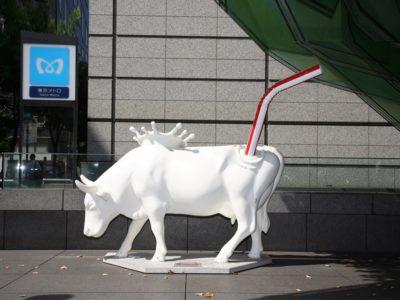Milk Splash 濺起的牛奶