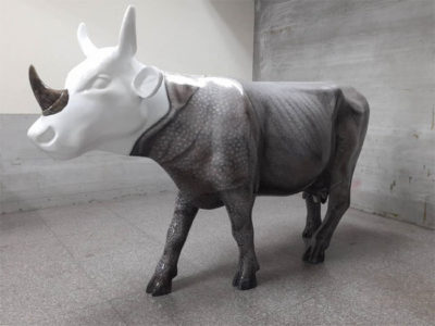 Rhino`s Hope 犀望之牛